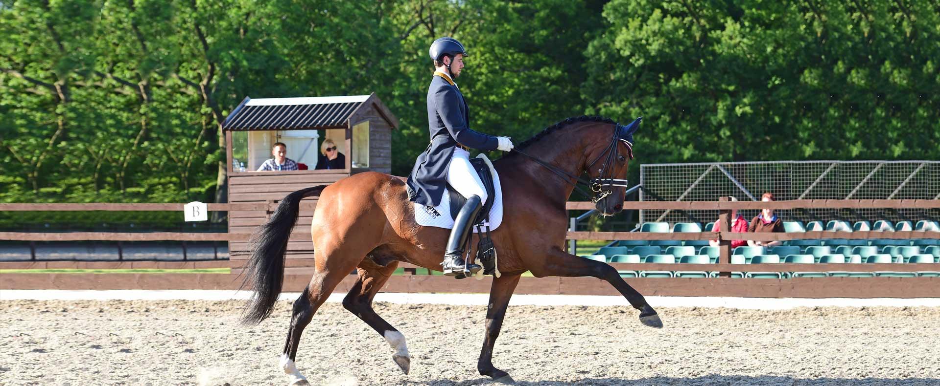 Charlie Hutton Equestrian